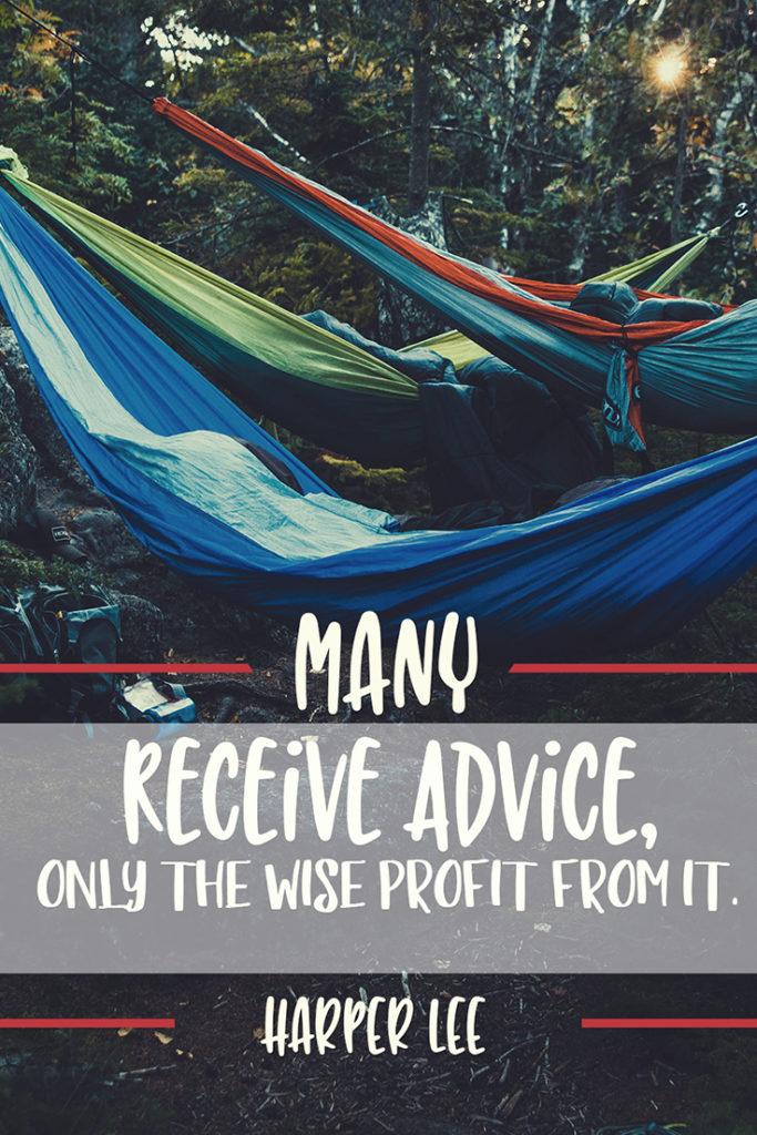2591 Lee pinterest 683x1024 - How do you take your advice?