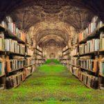 Books Shelves Grass Castle  - Prettysleepy / Pixabay