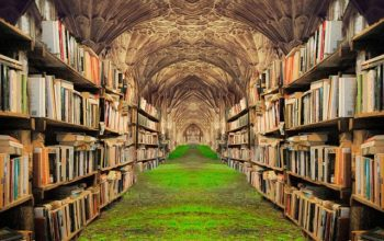 Books Shelves Grass Castle  - Prettysleepy / Pixabay