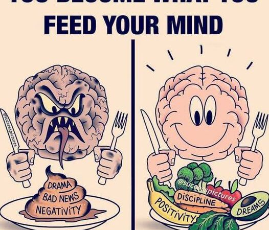 124932536 1712282835619470 7378826654854810883 n 526x450 - What do you feed your mind?
