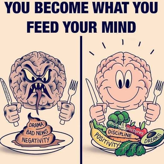 124932536 1712282835619470 7378826654854810883 n - What do you feed your mind?